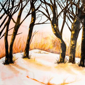 Winter Trees by Andrea Palmer