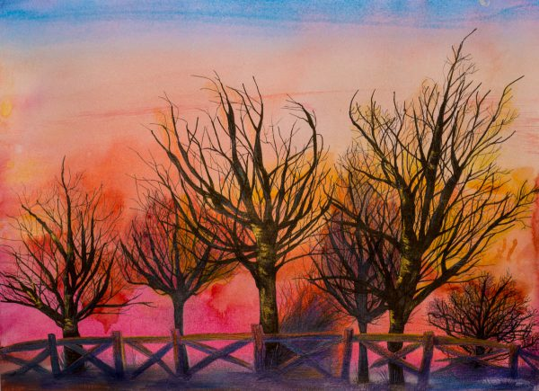 Winter Sunset by Andrea Palmer