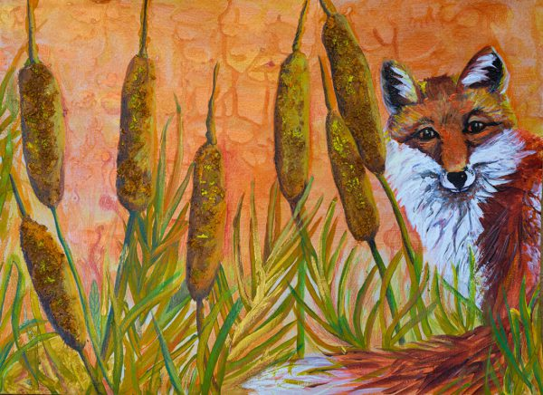 Fox in the Bulrushes by Andrea Palmer