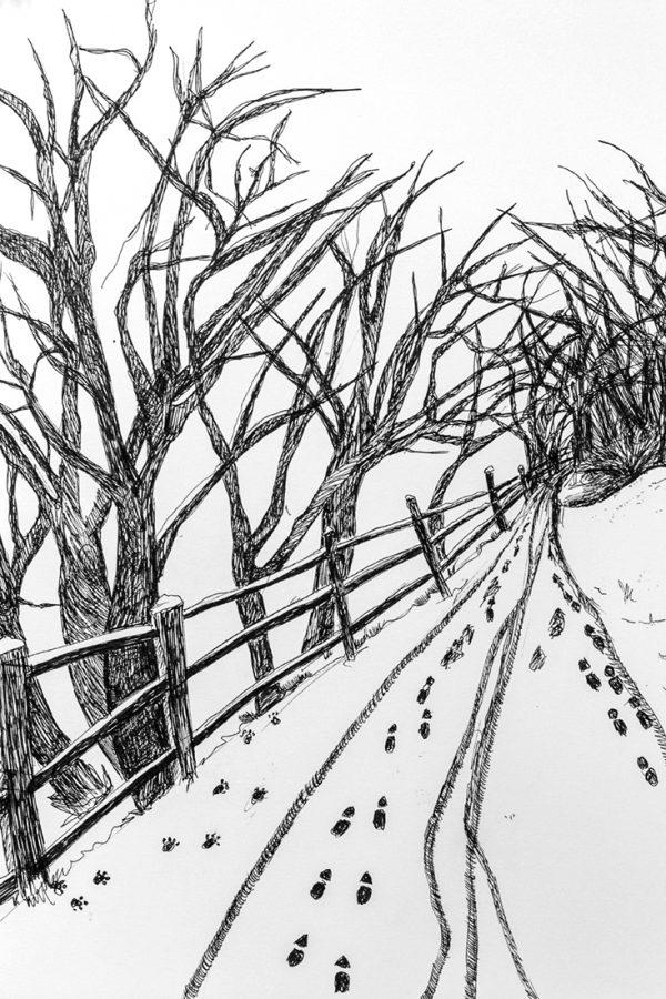 Winter Walk by Andrea Palmer